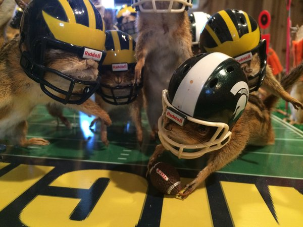 This photo taken Monday, Oct. 26, 2015, shows stuffed chipmunks portraying players on the final play of the Michigan State-Michigan NCAA college football game at the home of taxidermist Nick Saade in Lansing, Mich.  Michigan State's Jalen Watts-Jackson returned a fumble for the game-winning touchdown on Oct. 17. Saade tells the Lansing State Journal that the chipmunks were trapped by friends as nuisance animals.  Saade's first piece sold to a Wolverine fan in New Jersey for $1,500. This one is for sale at the same price, he said.