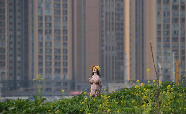 Source- A farmer keeps pests away using a scarecrow made from an inflatable sex doll. The muddy sex doll also wears a yellow safety helmet and has reportedly been effective at scaring off birds – as well as people. The stark-naked blow-up doll is thought to have belonged to a worker at a construction site near the field in Chengdu, capital of China's south-western Sichuan Province. It was then found by a local rapeseed farmer, who stood it up in the patch of greenery in order to ward off crows and other unwanted pests.