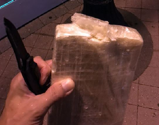 "Sun Sentinel- When Doug Phinney walked into a bar on A1A about 1 a.m. Tuesday with an open kilo of suspected cocaine in his hands, he wasn't looking to make a sale or even worried about being arrested. In fact, he was looking for a cop. ""I finally flagged down an officer driving by,"" said Phinney, 52, from Wilton Manors. ""And I showed him what I found."" Phinney made his discovery on the sands of Fort Lauderdale beach during a routine nighttime patrol as a volunteer with the Sea Turtle Oversight Program, designed to protect the behemoth sea creatures during the summer nesting season. During his four-hour patrol he did spot 11 loggerhead turtles who swam ashore to lay eggs.But it was the drugs that made the night memorable. ""I was doing what I always do,"" said Phinney, on summer break from teaching legal studies at the online Florida Virtual School. ""It was raining, the surf was crashing, there was a ton of seaweed on the beach, and then I saw this package the size of a brick. As soon as I picked it up I knew what it was."" Phinney said he used a knife to slice open the package and found a white sticky substance that a Fort Lauderdale police dog seemed to recognize as cocaine. When police received a call about found narcotics, Officer Giovanni Morales responded, according to records. Three officers were soon on the scene, and all seemed rather blasé about the find, Phinney said. But the patrons of a nearby bar just north of Las Olas Boulevard were excited, Phinney said. ""They said, 'You found that right out there? Man, you should have given it to me,'"" said Phinney. Police made a report, and took possession of the suspected cocaine, Phinney said. Richard WhiteCloud, founding director of the Sea Turtle Oversight Program, said a monitor found a bale of suspected marijuana while on patrol about two weeks ago. But coming upon contraband is rare, he said. Phinney said when he cut the package open and got some of the product on his fingers he was tempted to rub a bit on his gums, as he's seen done in the movies. But he refrained. ""You did the right thing,"" Phinney said the police told him."